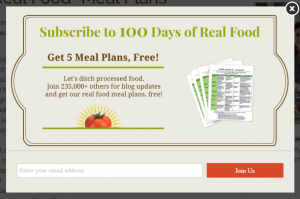 lead magnet 100days of real food 300x199 - lead-magnet-100days-of-real-food