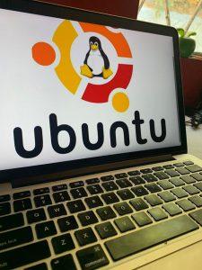 linux 225x300 - linux